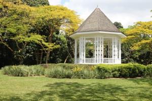 Singapore - botanic garden
