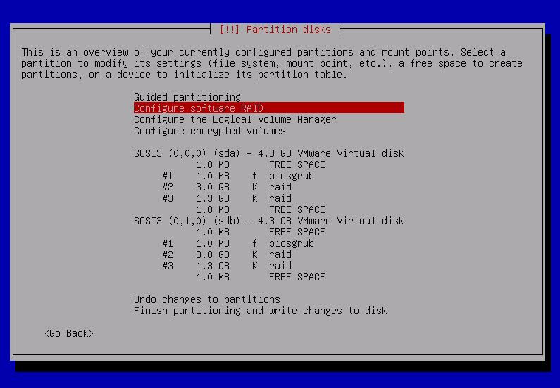 Mount Software Raid Debian